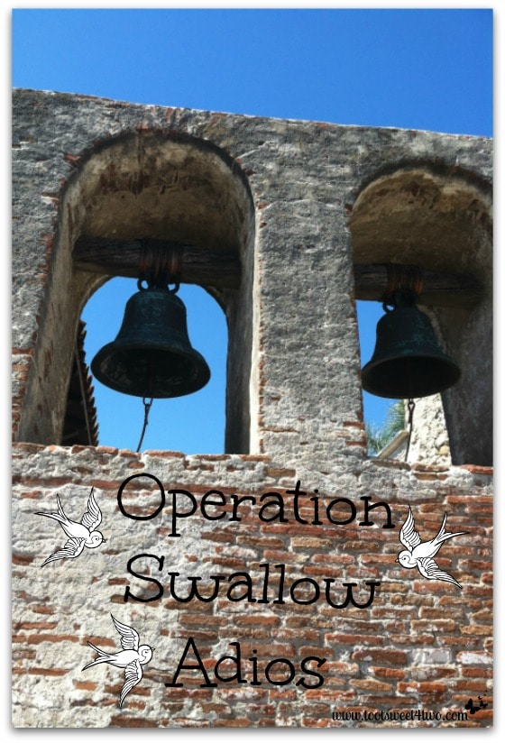 Operations Swallow Adios Pinterest