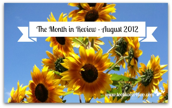 The Month in Review - August 2012 sunflowers