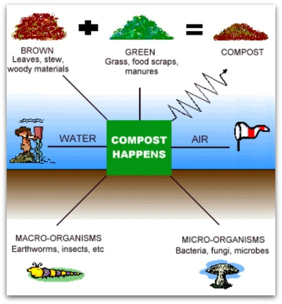 How compost happens (Photo source - Wikipedia)