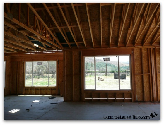 Framing from inside our house.