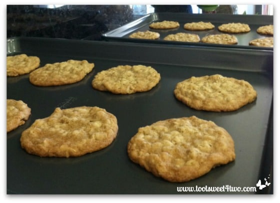 Oatmeal Cookies fresh from the oven