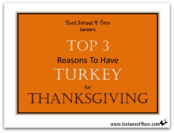 Top 3 Reasons to Have Turkey cover