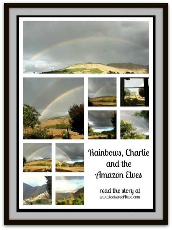 Rainbows, Charlie and the Amazon Elves