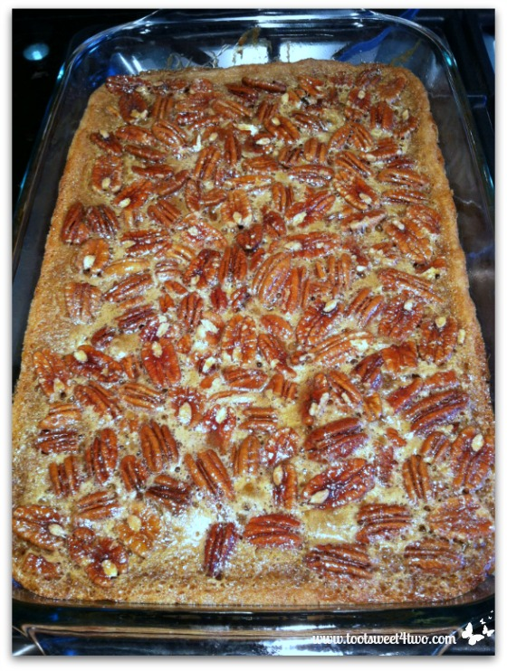 Salted Maple Pecan Pie Bars out of the oven