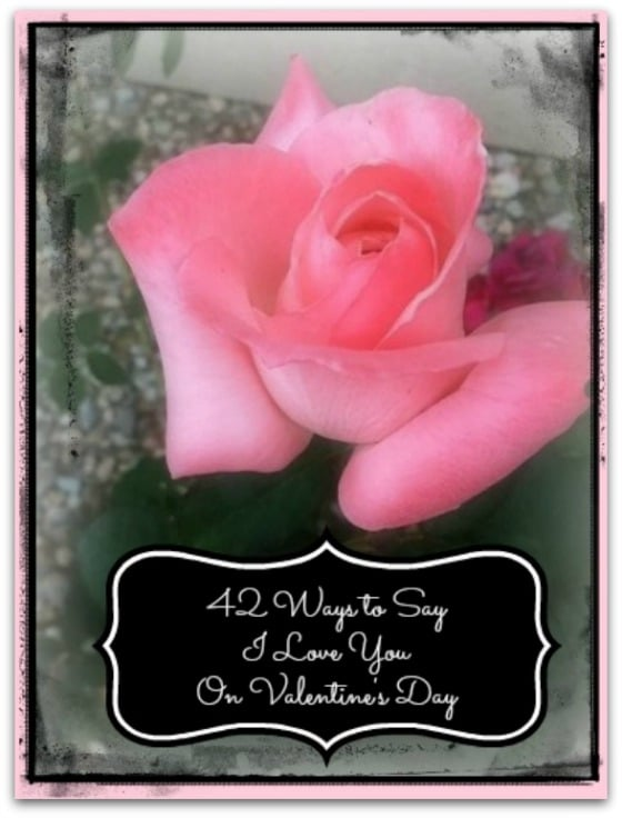 42 Ways to Say I Love You on Valentine's Day Rose