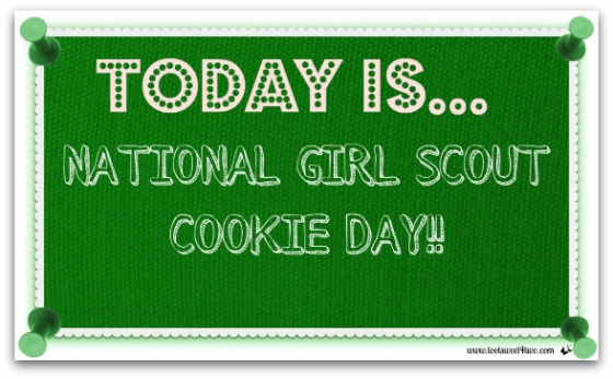 National Girl Scout Cookie Day - Thin Mint Detox