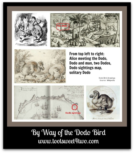 Wikipedia Dodo Bird collage - By Way of the Dodo Bird