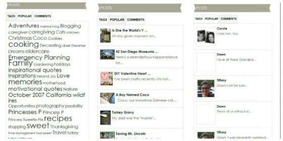Posts Tags, Popular, Comments Widget - 10 Ways to Improve Your Blog's Design