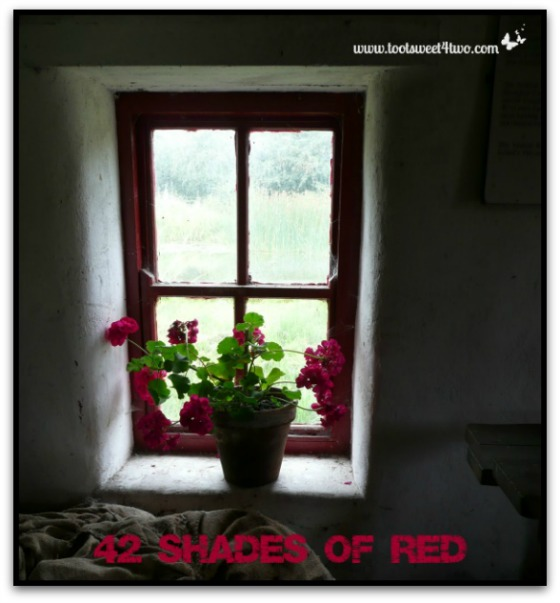 Red Window Frame for Featured Image