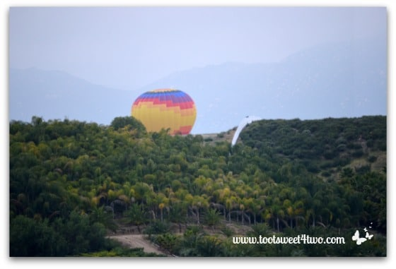 Yellow Center Hot Air Balloon ascending from behind a hill