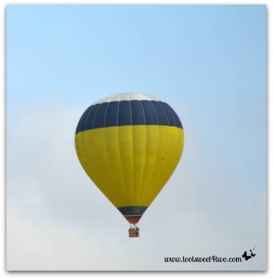 White Top Hot Air Balloon