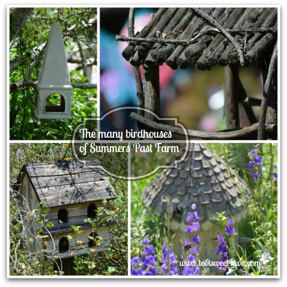 Birdhouse of Summers Past Farm