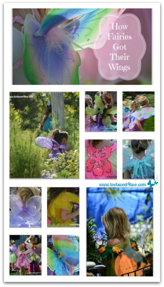 How Do Fairies Get Their Wings Pinterest