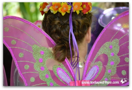 Pink and Green Fairy Wings