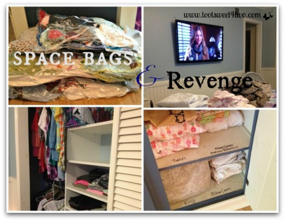 space-bags-and-revenge
