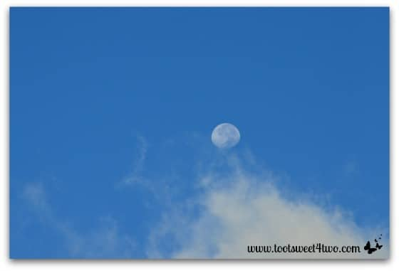 Morning clouds and the moon