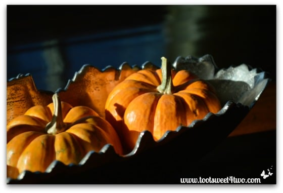 Mini pumpkins in a silver bowl - right side view