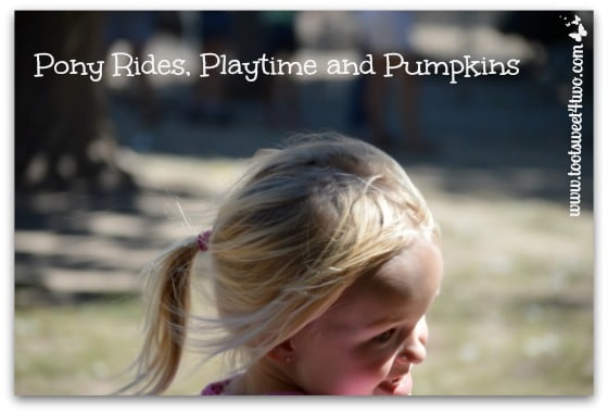 Pony Rides, Playtime and Pumpkins