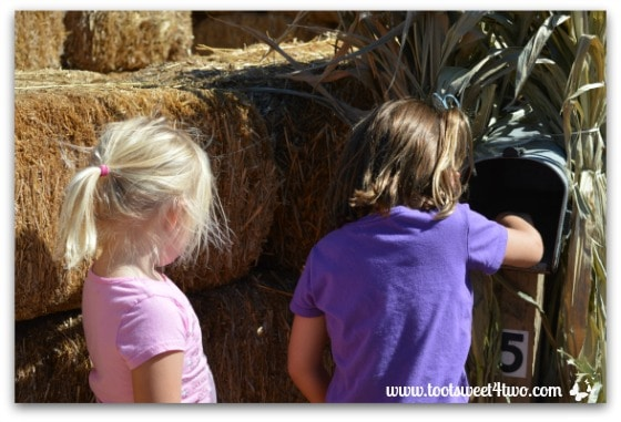 Taking turns at the mailbox in the Straw Maze