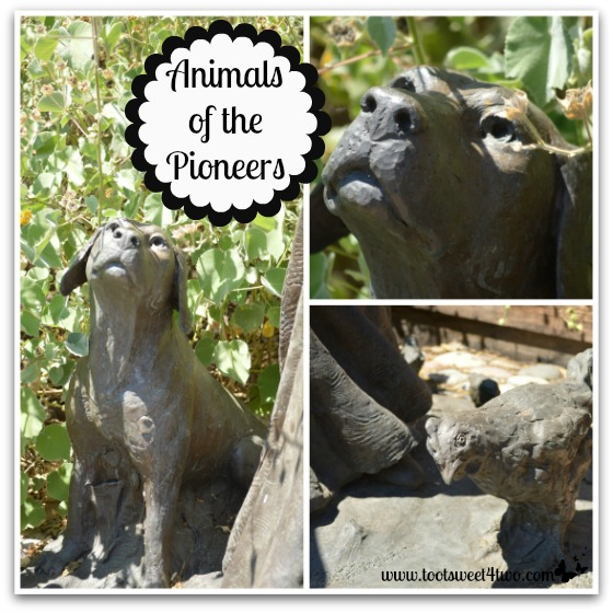 Animals of The Pioneers