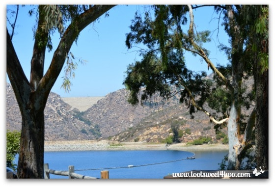 Lake Poway thru the trees