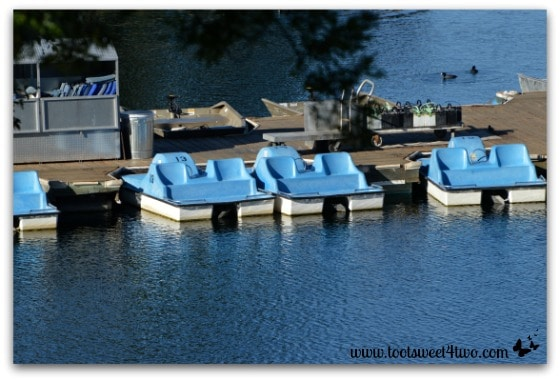 Paddle boats at Lake Poway