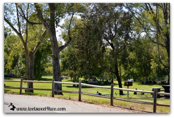 Picnickers at Lake Poway