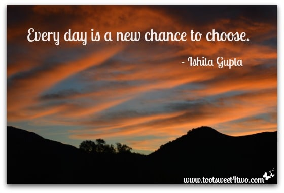 Every day is a new chance to choose cover