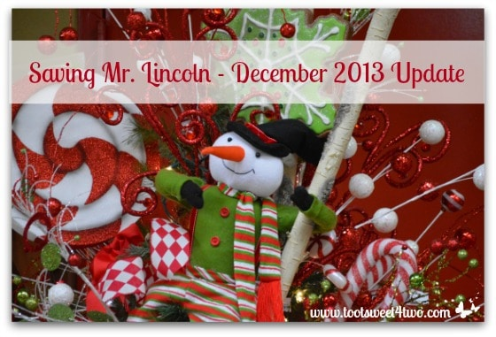 Saving Mr. Lincoln – December 2013 Update