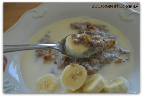 Spoonful of Vanilla Cinnamon Oatmeal with Walnuts and Bananas