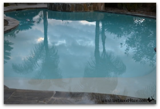 Picture 2 - Palm trees and clouds reflected in pool - November 23, 2013