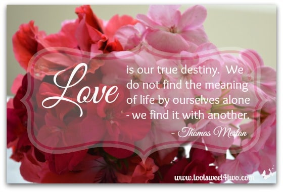 Love is Our True Destiny