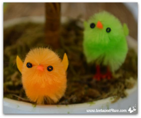 Tiny little chicks - Decorating the Table for an Easter Celebration