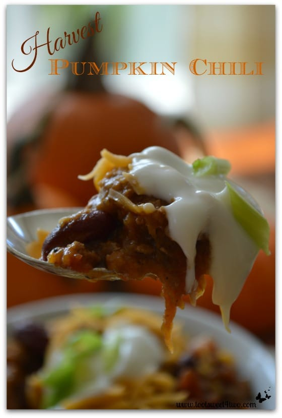 Harvest Pumpkin Chili close-up Pinterest - The Chew