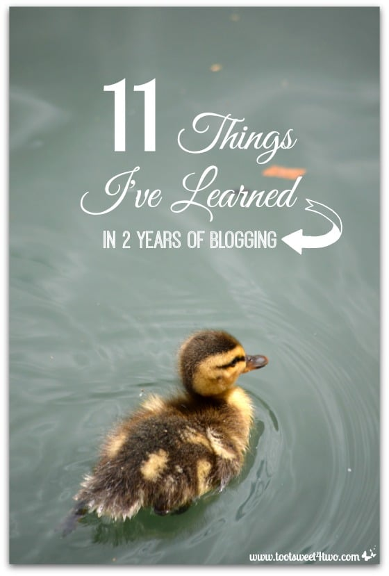11 Things I've Learned in 2 Years of Blogging cover - baby duckling