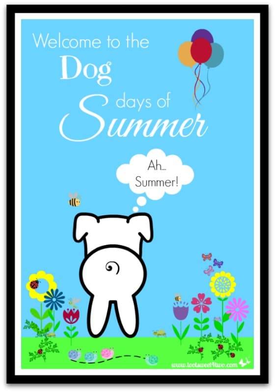 PicMonkey Basics - Design Your Own - Welcome to the Dog Days of Summer