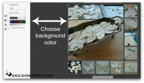 PicMonkey Basics - Pic 5 - Create a Collage - Background Color