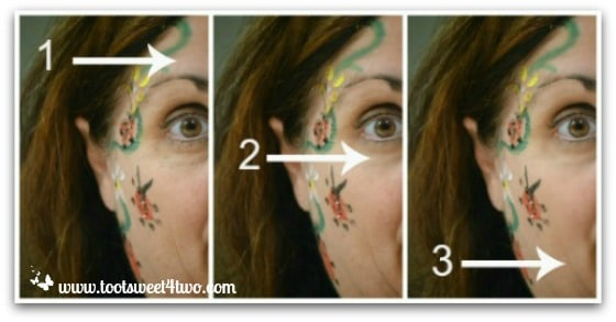 PicMonkey Basics - Touch Up a Photo - Pic 3 - Wrinkle Remover