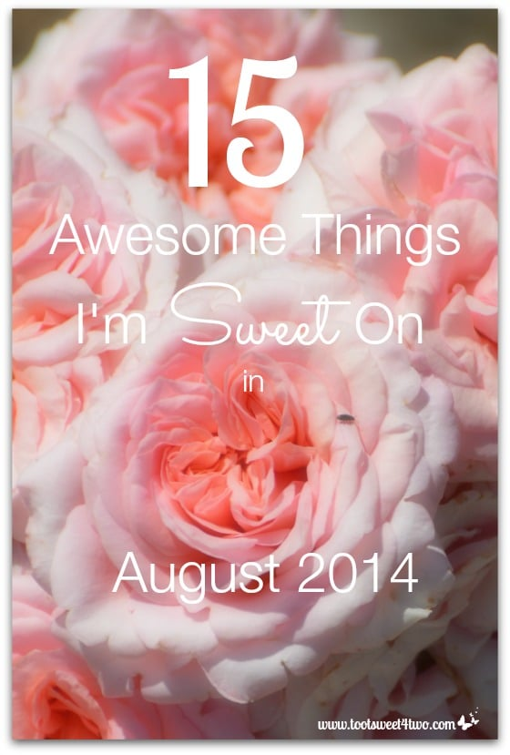15 Awesome Things I'm Sweet On in August 2014 cover