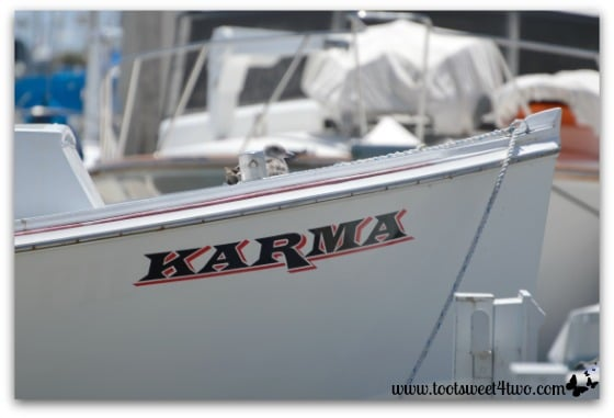 Karma and seagull - Oceanside Harbor