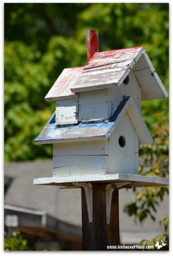 Strike a Pose - birdhouse, Old Poway Park