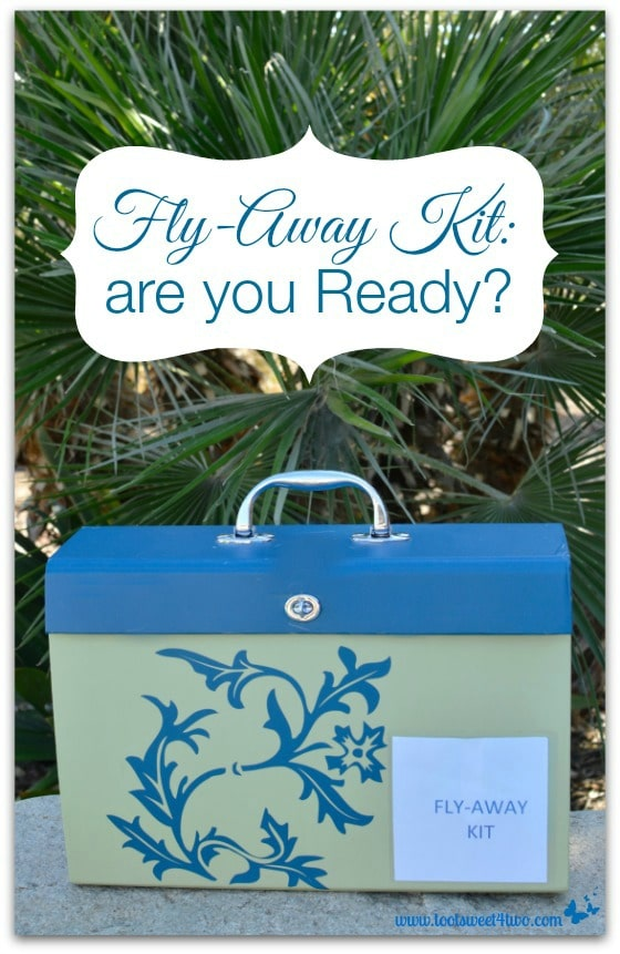 Fly Away Kit are you Ready Pic 1