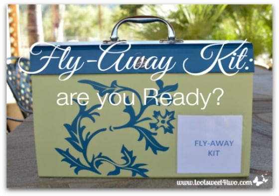 Fly Away Kit are you Ready Pic 2