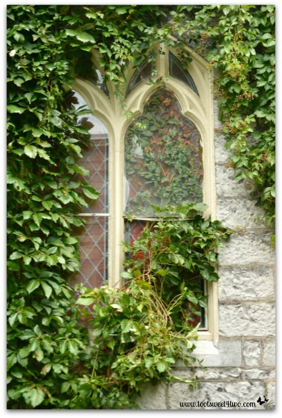 Ivy covered window at Hogwarts on the Lake