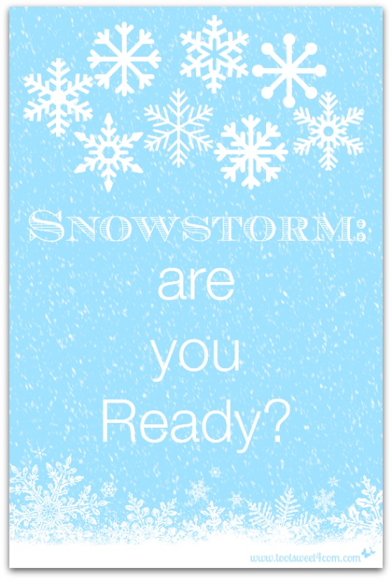 Snowstorm are you Ready cover