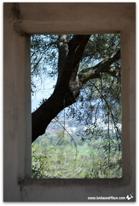Through a portico window, Serra Museum, Presidio Park, San Diego