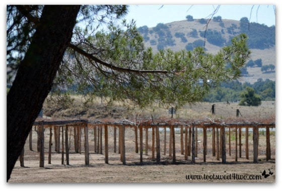 Ceremonial site - Mission Santa Ysabel
