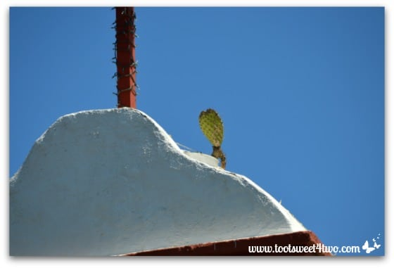 Legendary cactus atop Bell Tower at Mission San Antonio de Pala