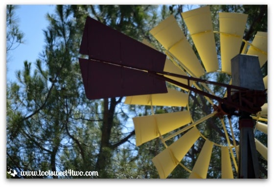 Windmill in the trees - Mission Santa Ysabel