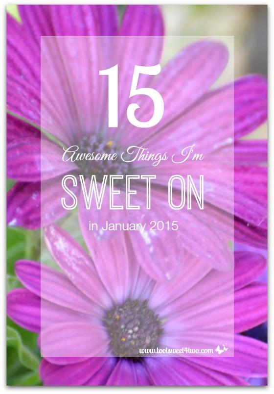 15 Awesome Things I'm Sweet On in January 2015 cover